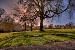 Mid-day sun at Waddesdon Manor (HDR) (eFRAME.co.uk) Tags: framed framer frame framing hdr pictureframe photoframes waddesdonmanor eframe eframecouk 20120321