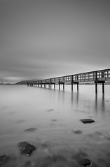 Candlestick Pier (danielpivnick) Tags: sanfrancisco california wood old bw water fog landscape bay pier vanishingpoint blackwhite tide 49ers bayarea lowclouds stilts sanbruno marinelayer candlestickpark shallowwater candlestickpier 49erstadium