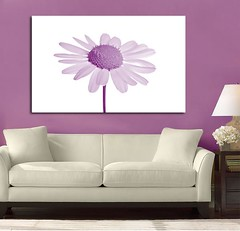 Daisy Beauty Purple (Simply Canvas Art) Tags: art wallart flowerart homedecoration flowerprints flowercanvas flowerwallart flowercanvasprints flowercanvasart flowercanvaswallart
