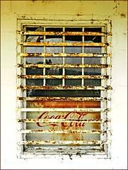 Killebrew Store Window:  Ed