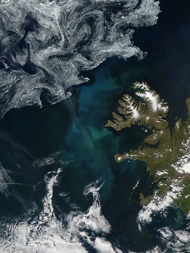 iceland nasa bloom goddard phytoplankton visipix