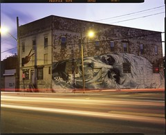 Long Exposure of ECB Mural, Bushwick (Shawn Hoke) Tags: nyc longexposure streetart film brooklyn mural slidefilm 4x5 lighttrails largeformat bushwick ecb fujiprovia100 flushingavenue epsonv500 toyo45aii schneider210mmf56 shawnhoke believeinfilm brooklyncorners
