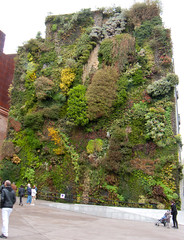 Vertical garden - Madrid, Spain (Chico Boomba) Tags: madrid museum spain greenwall caixaforum greenwalls patrickblanc verticalgardens plantedfacade