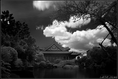National Concert Hall (LoBsTeRbig) Tags: trees cloud ir hall concert taiwan national infrared  hoya a77 r72  dsc08890