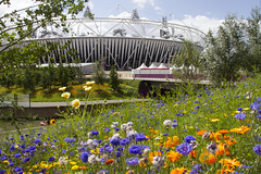 2012-08-02 Flowers and the Stadium on the Olympic Park 1 (Pondspider) Tags: park flowers london site stadium olympic olympics 2012 anneroberts annecattrell pondspider