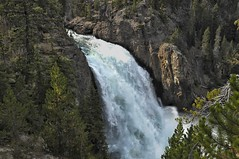 UPPER YELLOWSTONE FALLS (bydamanti) Tags: landscapes waterfalls yellowstonenationalpark yellowstone upperyellowstonefalls nationalparkphotography 1802000mmf3556 exquisitewaterfalls yellowstonevalleysandviews