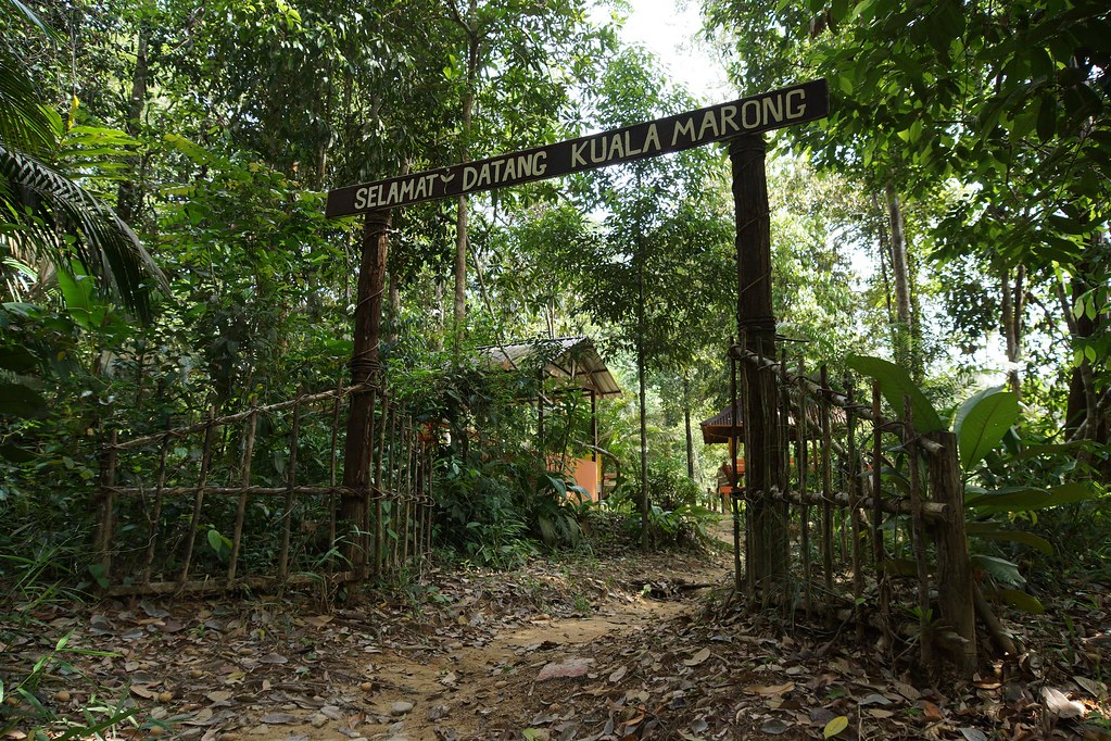 Welcome to Endau Rompin National Park, Malaysia