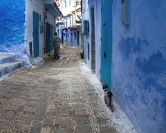 Chaouen: l'homme et le chat (cafard cosmique) Tags: africa mountain photography photo foto image northafrica morocco maroc chaouen chefchaouen marruecos marokko rif marrocos afrique chefchouen xaouen chouen afriquedunord    bluetowncity