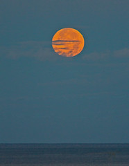 ocean moonset (bluewavechris) Tags: ocean morning sea sky moon color water clouds canon outdoors dawn hawaii maui fullmoon refraction moonset