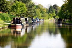Barges at rest (scottyrobson) Tags: uk travel trees green water grass river boat canal cheshire lock houseboat peaceful barge towpath audlem