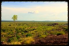Landmark (rachFNQ) Tags: nature landscape nationalpark australia lookout kakadu australianlandscape northernterritory naturephotography kakadunationalpark topend nawalandja