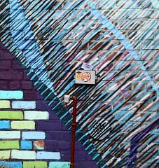 . (SA_Steve) Tags: nyc urban newyork brick art wall brooklyn bushwick bushwickny