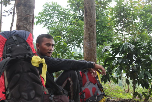 "Pendakian Sakuntala Gunung Argopuro Juni 2014 • <a style=""font-size:0.8em;"" href=""http://www.flickr.com/photos/24767572@N00/27128916436/"" target=""_blank"">View on Flickr</a>"