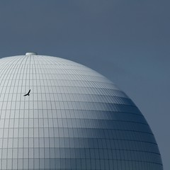 Suffolk 2016 (No Great Hurry) Tags: blue roof abstract building art architecture suffolk exposure flickr outdoor seagull gull nuclear dome blueskies minimalism amateur powerstation sizewell nogreathurry robinmauricebarr