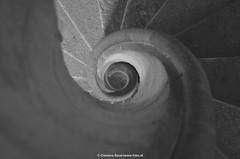 Wendeltreppe2 (fobo.at) Tags: spiral sightseeing double staircase graz steiermark burg stufen sehenswrdigkeiten graustufen doppelwendeltreppe