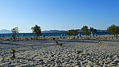 Ocean, palms and sunbeds (SantGalto) Tags: ocean sea palms sunbeds greece kos paradise distant