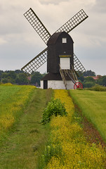 Pitstone Windmill (paulinuk99999 - just no time :() Tags: england windmill buckinghamshire beacon ivinghoe pitstone paulinuk99999 sal70400g
