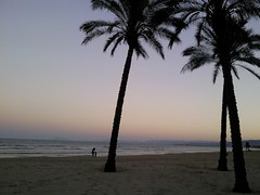 Mediterráneo (d_lazaro) Tags: mar playa palmeras arena olas mediterráneo horizonte anochecer daniellázaro