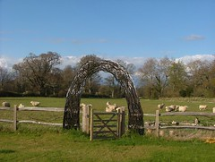 Bignor park archway proposal (Mark and Rebecca Ford Art Sculpture) Tags: sculpture art countryside pond pod arch nest westsussex seat willow eggs archway woven blackbird landart chichester blueeggs ecoart livingwillow countryparks southdownsnationalpark bignorparkapril12