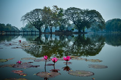 Zen (Alexandre Moreau | Photography) Tags: lake thailand photo nikon wide zen thai sukhothai bouddhisme d7000