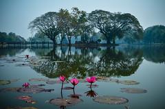 Zen (Alexandre Moreau | Photography) Tags: lake thailand photo nikon wide zen thai sukhothai bouddhisme d7000
