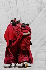 friendship (Sophie et Fred) Tags: china people monk tibet monastery chine monastère ganden flickrduel mygearandme mygearandmepremium