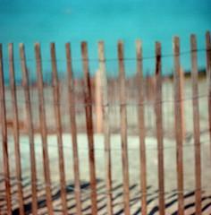 Protecting the dunes (VLBPhotography) Tags: portrait usa film beach analog mediumformat southcarolina bluffton hiltonheadisland kodakportra400 mayriver russianlenses squarephotography p6mount