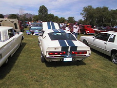1967 Shelby Mustang GT500 (coconv) Tags: pictures auto old cars car vintage 22 photo automobile image photos antique picture images vehicles photographs 350 photograph 1967 shelby vehicle autos mustang collectible 500 gt collectors 67 automobiles fastback gt500 gt350 blart