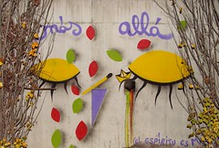 Màs allÀ... (Felipe Smides) Tags: streetart graffiti mural buenos aires eoy elotroyo muralismo xmf smides felipesmides intervenciòn marìafernandaaldana