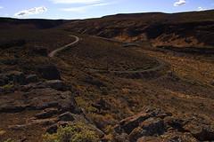Brown and Copper (Badnotna FPV) Tags: desert columbiariver hillside ginko centralwashington washingtonbadlands