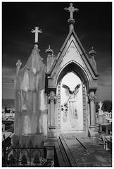 (Libuse Premyslid) Tags: friedhof cemeteries grave angel spain cross graveyards cementerio asturias cemitério oviedo xix cimetière cimiteri friedhoefe