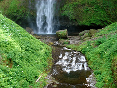 Multnomah green (RobertCross1) Tags: green nature water oregon landscape waterfall northwest or scenic pacificnorthwest westcoast multnomahfalls columbiarivergorge thegalaxy nationalscenicarea northernoregon mygearandme mygearandmepremium mygearandmebronze mygearandmesilver