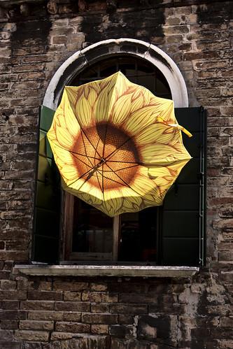 eyeRish-Window Umbrella