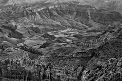 Grand Canyon - Colorado River From Lipan Point - BW (JohnColeUSA) Tags: blackandwhite bw landscape grandcanyon coloradoriver lipanpoint