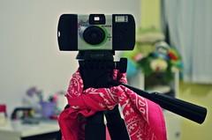 Feliz Dia Mundial da Fotografia! (LollyGates8D) Tags: world photography day room dia meu da quarto fotografia mundial lenço câmera tripé descartável fugifilm