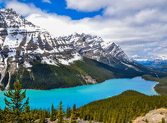 Lake Peyto - The Canadian Rockies (Peter J Moore) Tags: beautifulworldchallenges