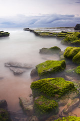 Turimetta Green (goodbyebyesunday) Tags: longexposure green clouds sunrise canon moss rocks raw waves sydney australia nsw northernbeaches nd400 northnarrabeen 1740mmf4l 40d turimetta
