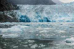 _MG_5090a (markbyzewski) Tags: alaska ugly iceberg tracyarm southsawyerglacier