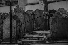 Da 101: Cementerio Judio (Praga) (marieta.c) Tags: berlin cementerio praga cielo mirar alemania efecto alemanes judio republicacheca gafasdesol sinagoga proyecto365 nikond7000 proyecto365marieta