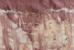 Pattern (detail 2) (jonnydredge) Tags: london rose botanical rust berries natural eucalyptus dying eco shibori summerfruits
