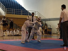 stefanou_15_5_2016_knockdown_217