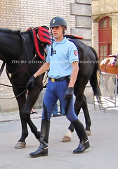 bootsservice 07 9144 (bootsservice) Tags: horses horse paris army cheval spurs uniform boots military gloves cavalier uniforms rider cavalry militaire weston bottes riders arme chevaux uniforme gendarme cavaliers gendarmerie cavalerie uniformes gants riding boots eperons garde rpublicaine
