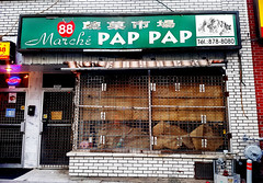 Closed - March Pap Pap, Montreal Chinatown (Exile on Ontario St) Tags: marchpappap montral montrealchinatown quartierchinois montreal chinatown quartier chinois pappap march grocery store groceries saintlaurent stlaurent candies candy goodies boutique pap closed abandoned abandonn ferm disappeared business commerce former window display sign signe enseigne vert green chinatowns chinese gone outofbusiness abandon