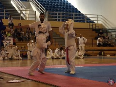 stefanou_15_5_2016_knockdown_119