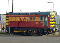EWS 08802 at Goole Docks (dgh2222) Tags: docks class 08 goole ews 08802