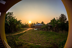 school in one of the most remote parts of bangladesh, pablakhali (a5if) Tags: school trees sunset sky cloud sun love nature field sunrise children education bangladesh bangladeshi
