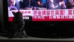 2012-08-06 13.11.59 (hui5300) Tags: 2012