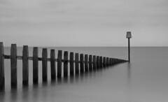 Silence (Collingwood505) Tags: wood sea sky blackandwhite blackwhite still quiet outdoor devon silence groyne groynes dawlishwarren