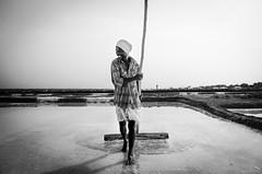 Saltpans (suresh31589) Tags: blacknwhite work hardlife tamilnadu marakkanam salt saltpans