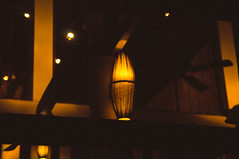 DSC04482 (Ngcson) Tags: monochrome pine sunflower lantern gloaming toyphotographer